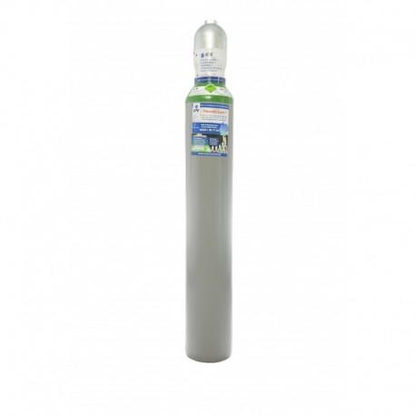 Argon 4.8 10 Liter Flasche PROFI Schweißargon WIG MIG Globalimport